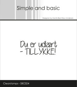 SIMPLE AND BASIC STEMPEL – Du er udlært