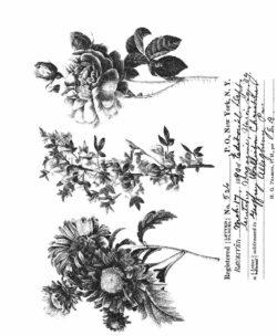 Tim Holtz Stempel – Flower Shop