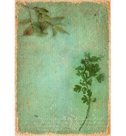 STUDIO LIGHT – Scrapark – A4 – Just Lou Botanical Collection nr.05