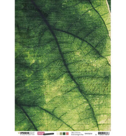 STUDIO LIGHT – Scrapark – A4 – Just Lou Botanical Collection nr.06