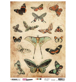 STUDIO LIGHT – Rispapir – A4 – Just Lou Botanical Collection nr.08