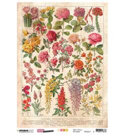 STUDIO LIGHT – Rispapir – A4 – Just Lou Botanical Collection nr.11