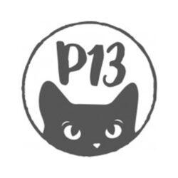Karton - Piatek13